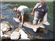 The Intrepid Angler on Tour - The Hells Canyon Sturgeon Enlightenment.
