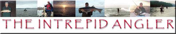 The Intrepid Angler; characterized by resolute fearlessness, fortitude, and endurance. This year, the Maryland Angler�s Network will unveil an eight part series of multimedia segments showcasing the varied angling opportunities available to residents of the Free State.  This journey, entitled The Intrepid Angler, will focus on sport fishing that is available to anyone willing to push the angling envelope.